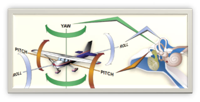 Aviation Safety Topic of the Month: Spacial Disorientation, or How to Land Upright
